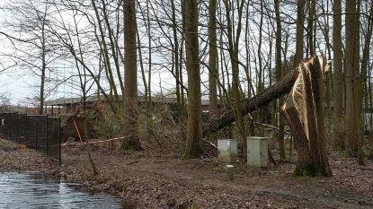 Bossen Puyenbroeck blijven dicht tot 18 maart, zwembad is morgen opnieuw open