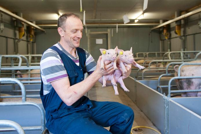 Varkensboer Peter Koekoek, een van de boeren die zondag hun bedrijf open stellen in de buurt van Broekland en Wijhe.