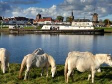 Wegroestende 'bunkerboot' moet rond 1 maart weg zijn uit Wijkse haven