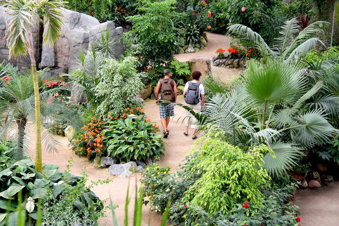 De Orchideeën Hoeve in Luttelgeest trekt jaarlijks veel bezoekers.