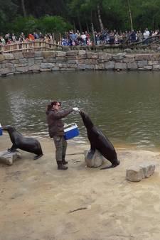 VIDEO: Safaripark voert campagne tegen 'plastic soep' in oceanen