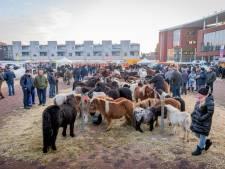 Eeuwenoude paardenmarkt in Goor stopt