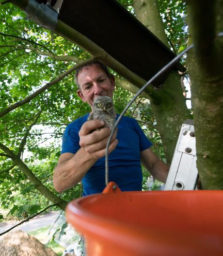 Wie wil bijzonder vrijwilligerswerk doen bij Stichting Hofvogels?