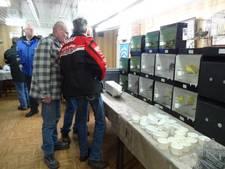 Dit keer geen vogelgriepperikelen bij jaarlijkse tentoonstelling De Edele Zangers Zaltbommel