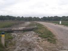 Het nieuwe schelpenpad over de Regte Heide is alleen voor minder-validen, niet voor fietsers