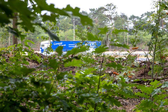 Wonen in de bossen van de wijk Oeyenbos. Op enkele meters slechts gescheiden door een paar bomen en wat struiken raast het verkeer voorbij op de A67. De Eerselse coalitie kwam deze week met het voorstel om een duurzame geluidswal langs deze snelweg te realiseren.