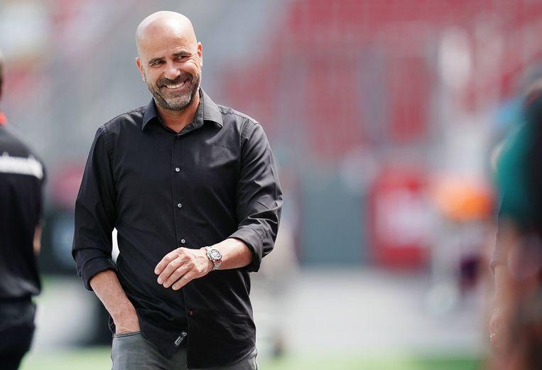 Trainer Peter Bosz van Leverkusen. Beeld BSR Agency