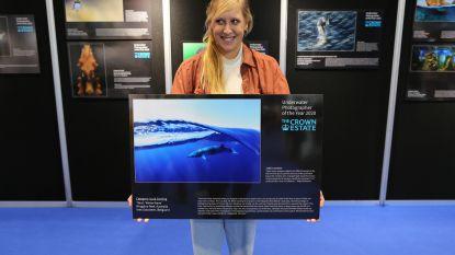 Leuvense fotografe wint internationale prijs met indrukwekkende onderwaterfoto