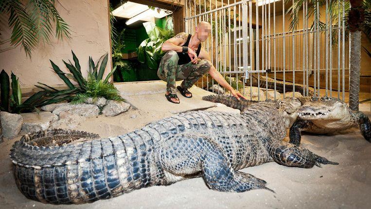 Dinsdagochtend komt 'krokodillenman' Ferry P. aan bod. Beeld Marc Driessen