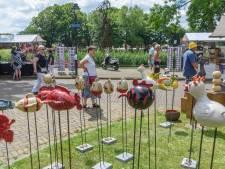 Processierups verdrijft kunstmarkt en triatlon in Hengelo