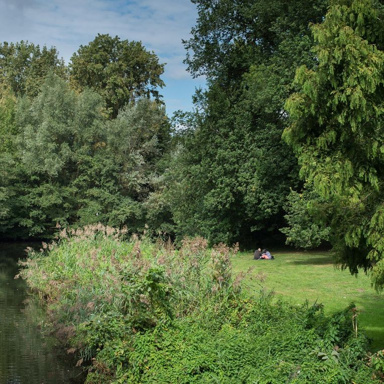 Het Rembrandtpark Beeld Mats van Soolingen