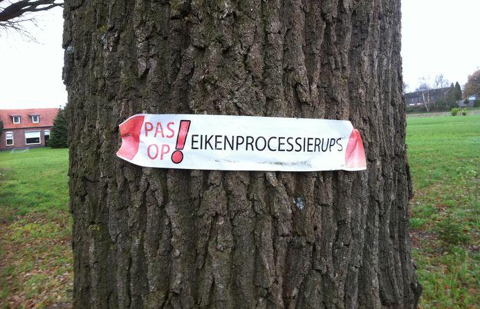 De eikenprocessierups rukt op en zorgt in Berkelland voor overlast, blijkt uit deze waarschuwing.