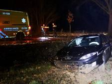 Automobiliste gewond na botsing met boom in Gassel