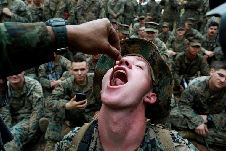 In de 'Cobra Gold' leren soldaten allerlei manieren om te overleven in de meest extreme situaties.