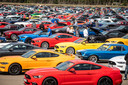 1.326 Ford Mustangs vormen langste parade ooit in Lommel.