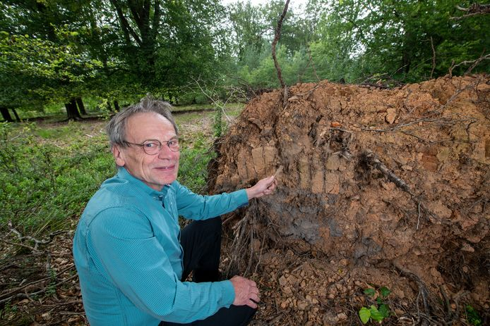 Speurend onder omgewaaide bomen ontdekte Cor van Baarle een rij middeleeuwse bakstenen, afkomstig van een veldoven.