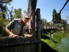 Kooiker Jan Reuser (72) houdt verhaal van de eendenkooi levend