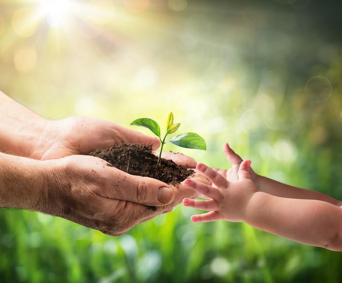 Bij Ter Weel kunnen ouderen samen met hun (klein)kinderen genieten van de  natuur.