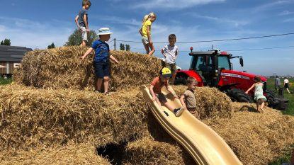 Kinderen leven zich uit op de boerderij