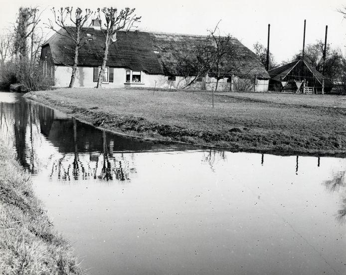 Monumentale boerderij Groenewoud aan de Groenewoudsedijk werd gesloopt voor de aanleg van businesspark Papendorp. De foto is gemaakt in 1989.