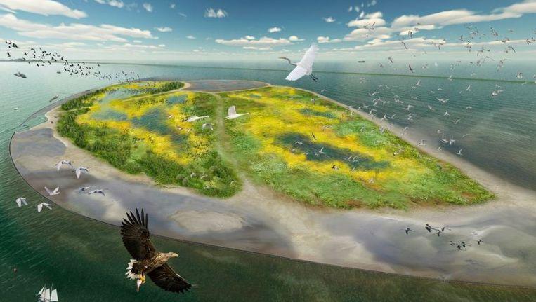 Langs de Houtribdijk tussen Enkhuizen en Lelystad moet een enorm vogelparadijs verschijnen. ILLUSTRATIE © NATUURMONUMENTEN Beeld