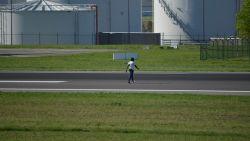Man kuiert op z'n dooie gemakje tussen de opstijgende vliegtuigen door op luchthaven van Zaventem