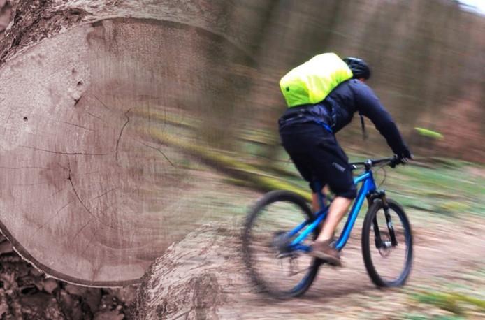 Julien was erg zuinig op zijn fiets, maar had niet kunnen vermoeden dat een dief een hele boom zou vellen.