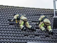 Brandweermannen zoeken irritante vleermuis in Mijdrecht
