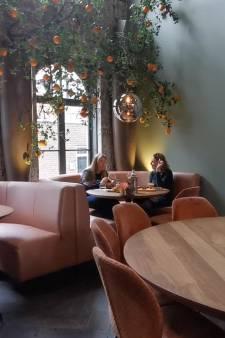 Over de Tong: Prins Mauritshuis in Blokzijl