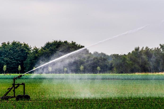 Een boer sproeit water over het land tijdens deze warme dagen.