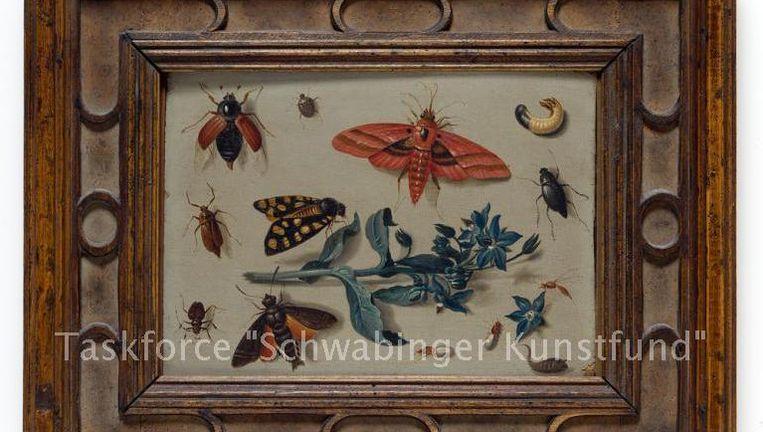 Een schilderij van Jan van Kessel. De teksten in de foto's zijn van de onderzoekers. Beeld Taskforce
