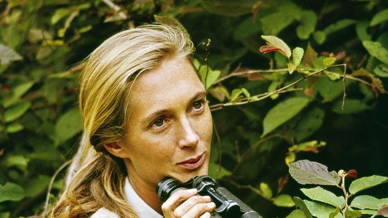 Jane Goodall in Jane van Brett Morgen. Beeld