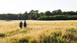 Nieuwe 'GroenZoeker' laat je mooiste groene plekjes ontdekken in provincie Antwerpen