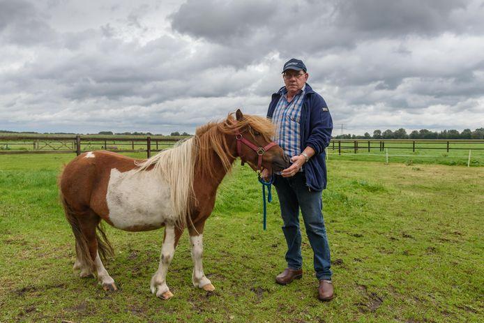 Van een van de vier pony's van Herman Boomkamp is een stuk van de manen afgeknipt.