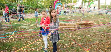 'Spinnetjes' met nijvere handjes weven in Groede groot web