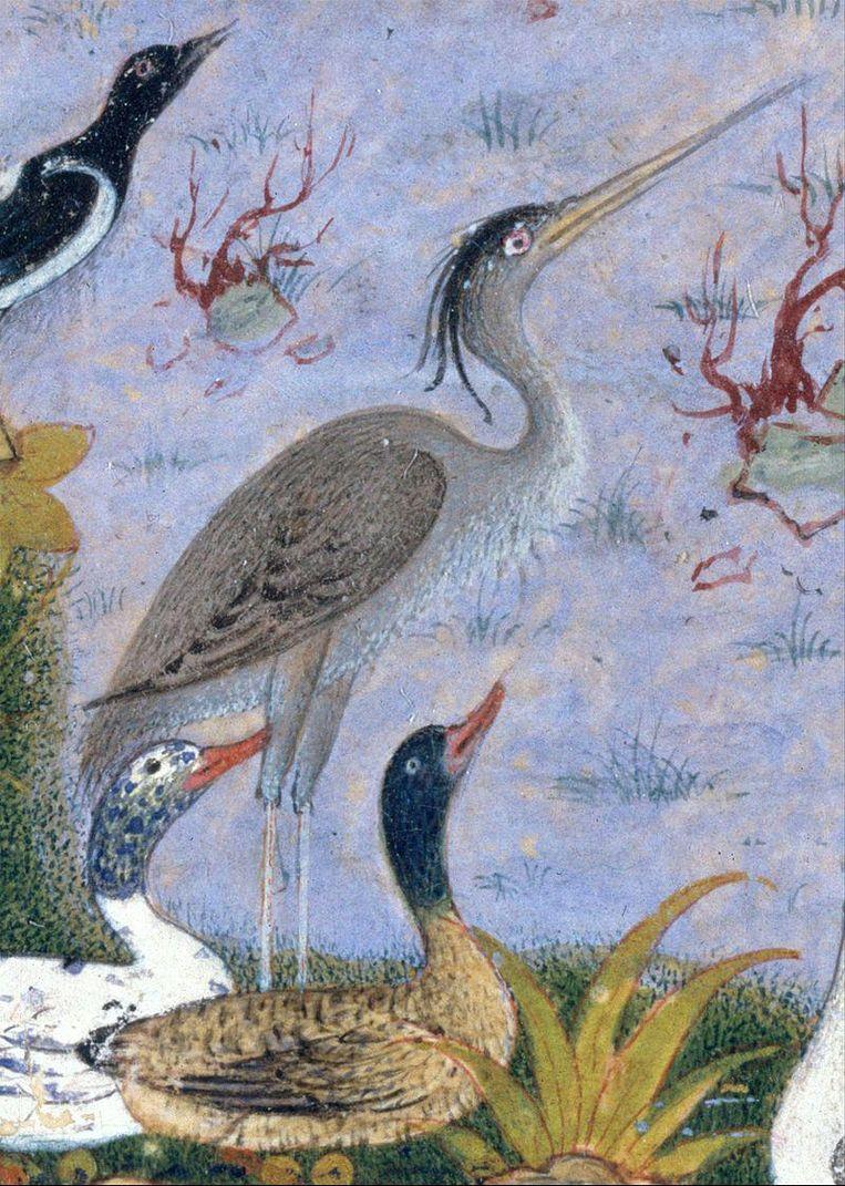Detail uit een schilderij uit het boek The Conference of the Birds door Farid ad-Din Attar Beeld RV - Met Museum
