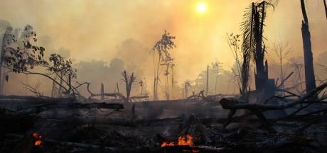 Bolsonaro: berichten over groeiende bosbranden Amazone zijn 'leugens'