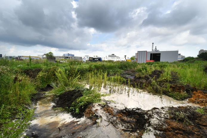 Het vervuilde terrein van AkzoNobel in Hengelo.