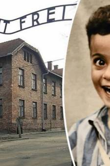 """L'histoire poignante d'Istvan, le """"petit garçon souriant"""" d'Auschwitz"""