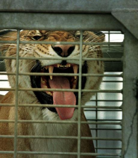 Woerdenaar (57) moet 152.000 euro betalen na illegale dierenhandel