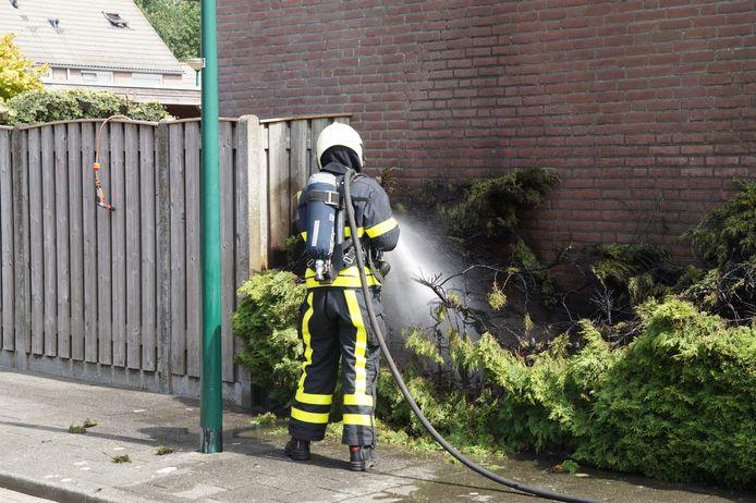 Bewoner steekt per ongeluk eigen heg in de fik in Kaatsheuvel