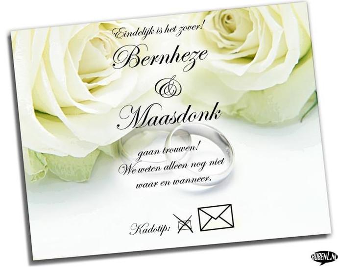 Het vorig jaar aangekondigde huwelijk tussen Bernheze en Maasdonk gaat niet door. illustratie Ruben Oppenheimer