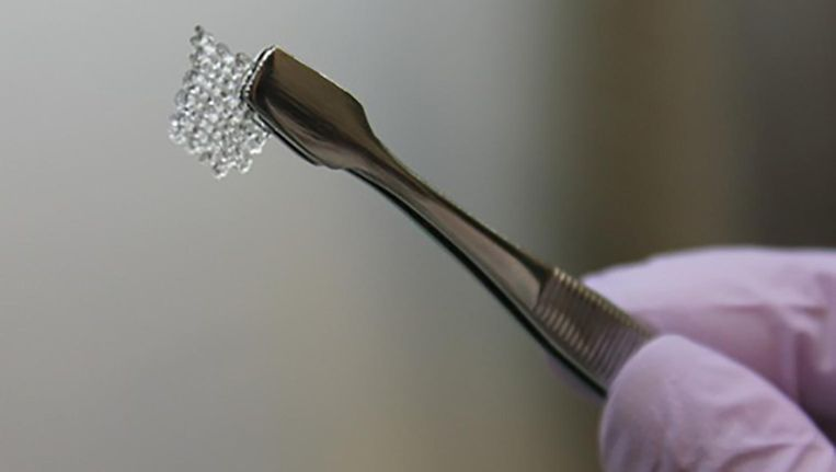 De mal van de kunstmatige eierstok, geprint met gelatine. Beeld Northwestern University
