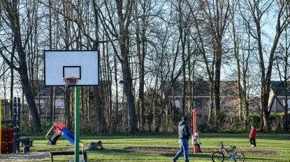 """Gemeente wil sport- en wandelpark Ter Elst opwaarderen: """"Nieuwe centrale kantine met kleedkamers"""""""