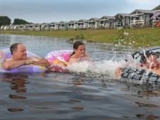 Blauwalg in het water van recreatieplas Eiland van Maurik