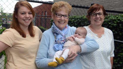 KU Leuven lanceert 'MamaMito': een onderzoeksproject om Vlamingen te laten kennismaken met hun voormoeders