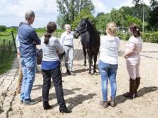 Ondernemers in Twenterand leren van een paard