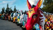 Kleurrijke ezels belegeren AED Studios voor het goede doel