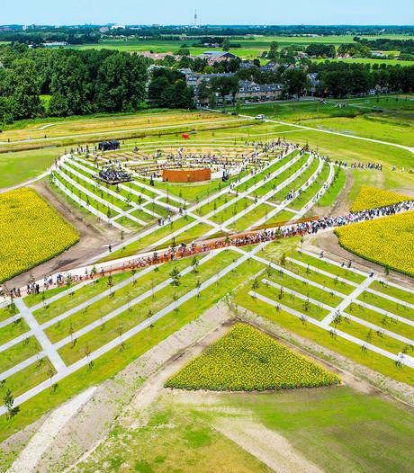 MH17-monument krijgt 170.714 paarsblauwe bloemen