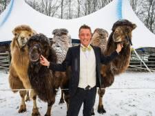 Wintercircus Tilburg begint 'voorzichtig' met voorbereidingen